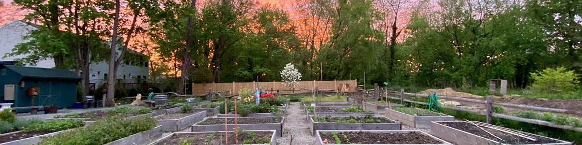 Manorhaven Village a community garden